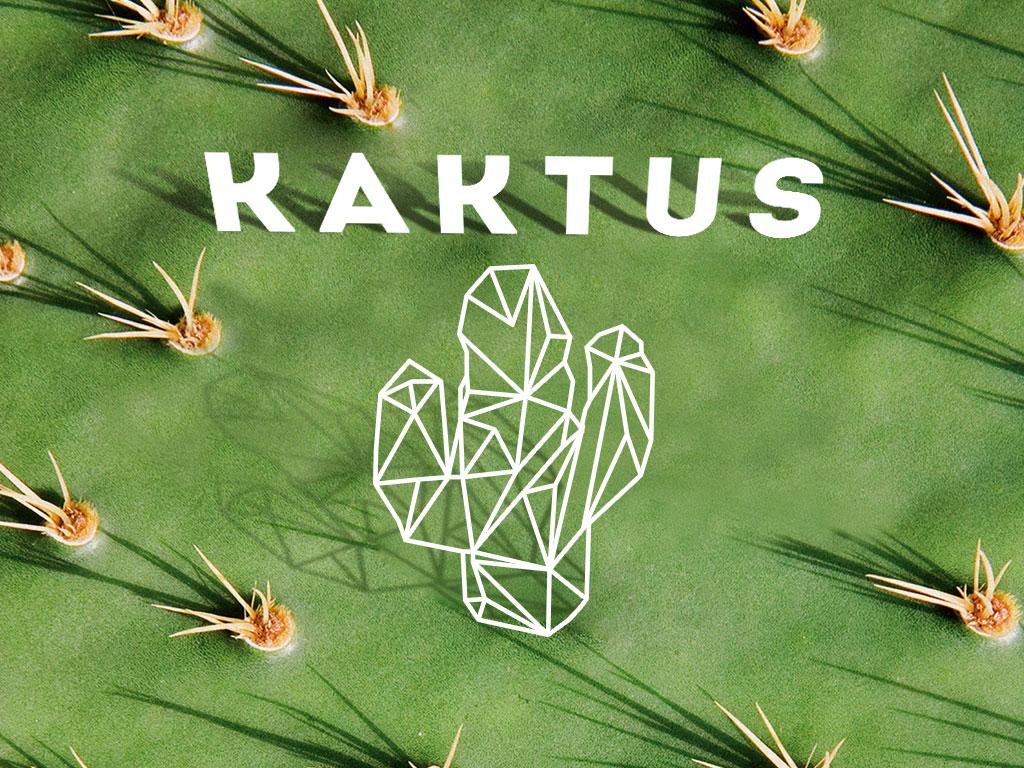 Kaktus_1024x768